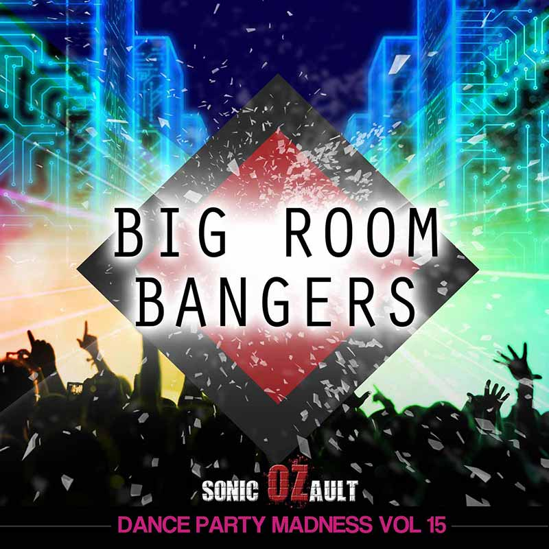 Dance Party Madness Vol 15 Big Room Bangers