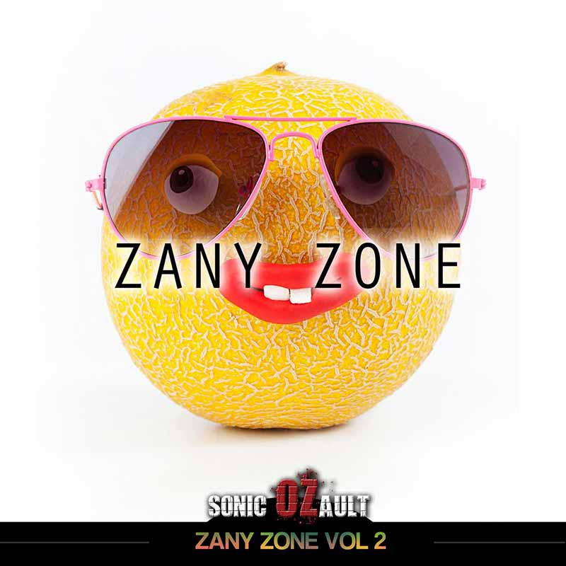 Zany Zone Vol 2